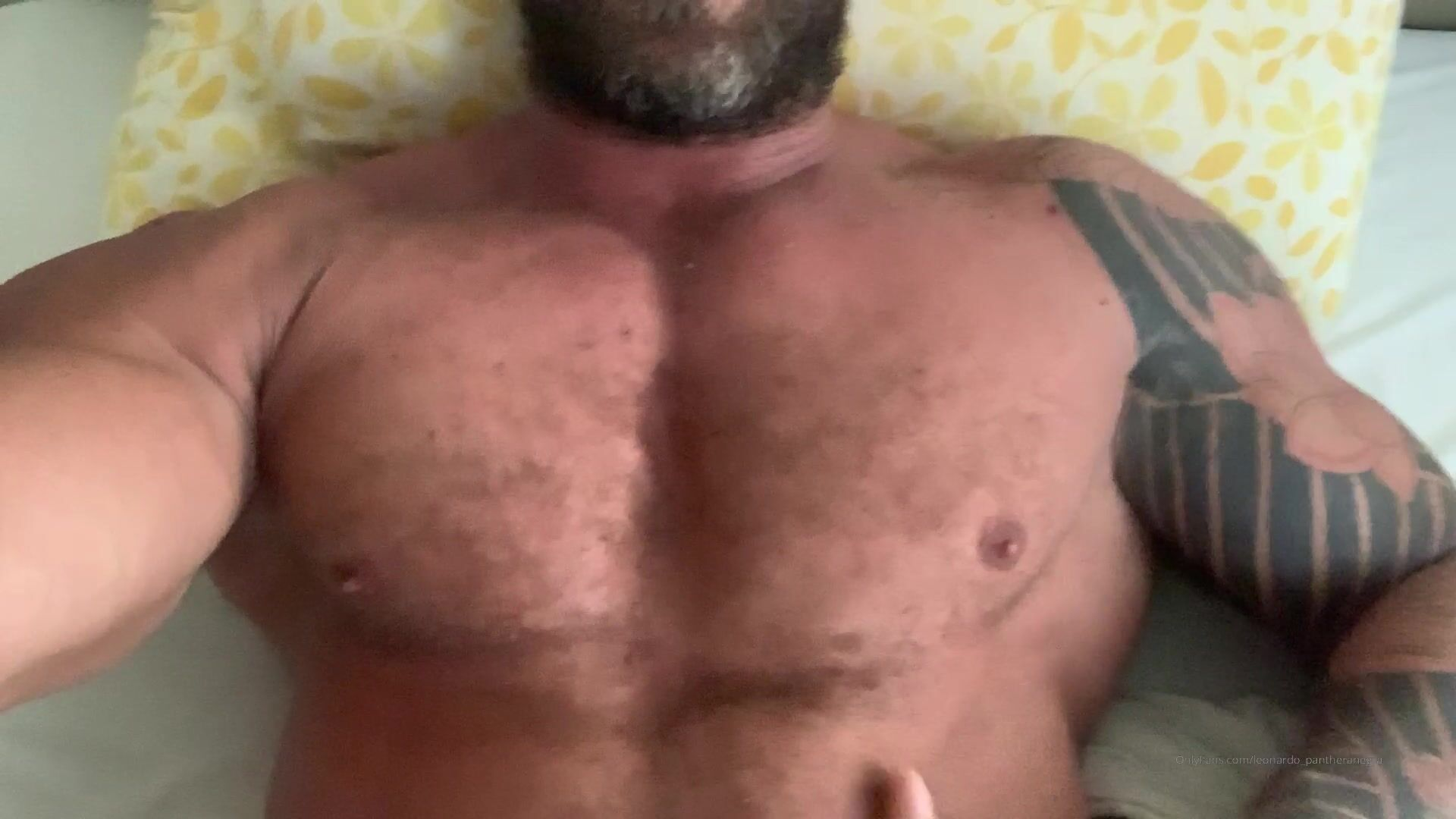 leonardo_pantheranegra free porn videos (6)